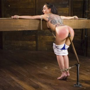 From $26.67 – Hogtied Discount (Save 47%)